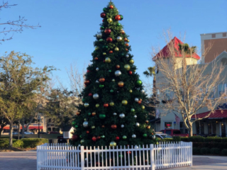 christmas tree decor in orlando fl
