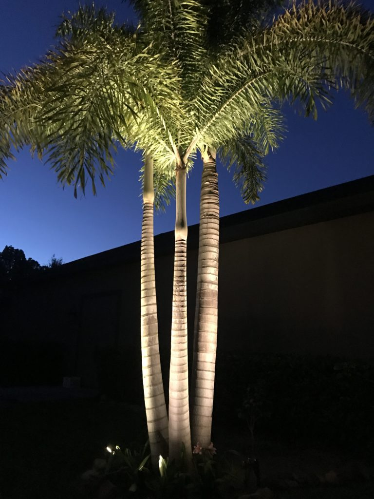 Landscape Lighting Companies Orlando Outdoor Led
